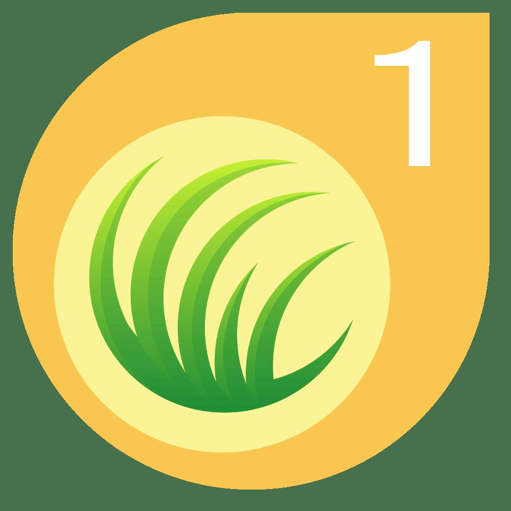 Spring Lawn Fertiliser Treatment