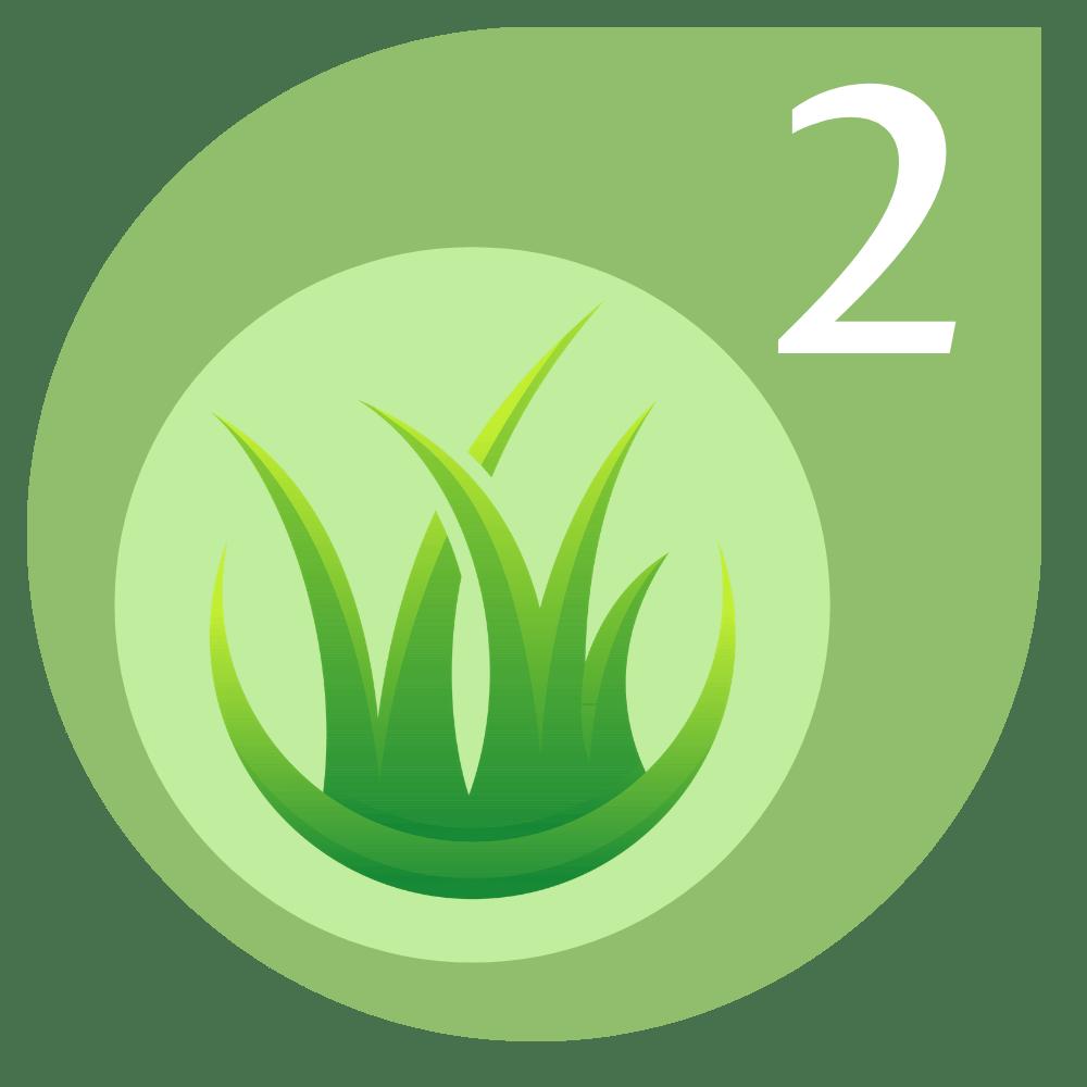 Early Summer Lawn Fertiliser Treatment