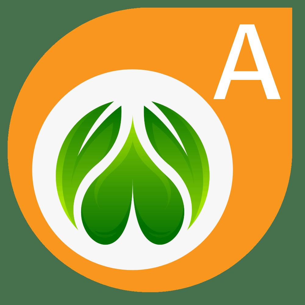 Lawn Aeration Treatment