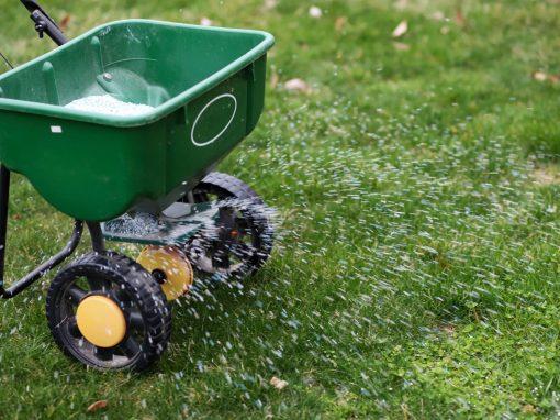 Expert Lawn Treatments
